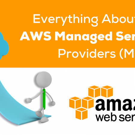 Everything About the AWS Managed Service Providers (MSPs)